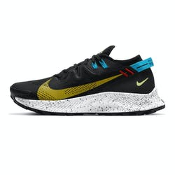 Nike Pegasus Trail 2 Heren